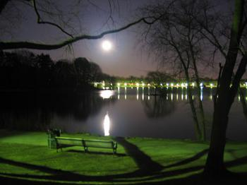 jamaica_pond_night.jpg