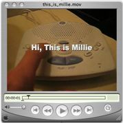 This_is_millie